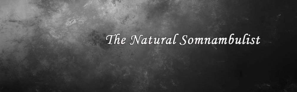 TheNaturalSomnambulist